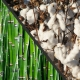 Bamboo vs. Cotton: What's Better?