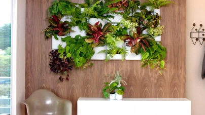 Indoor Vertical Gardens that Can Spice Up Your Condo's Design
