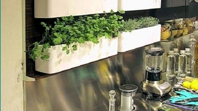 Kitchen Herb Wall Ideas