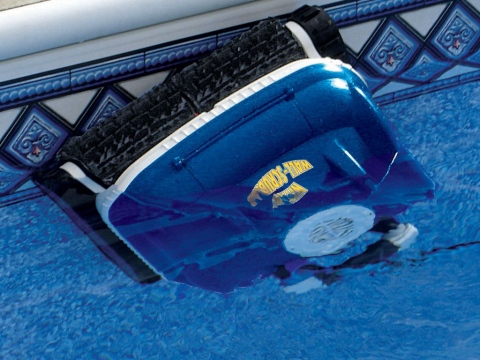 How Much Does It Cost to Maintain the Swimming Pool Picture