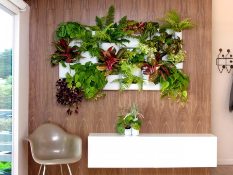 Indoor Vertical Gardens that Can Spice Up Your Condo's Design Picture