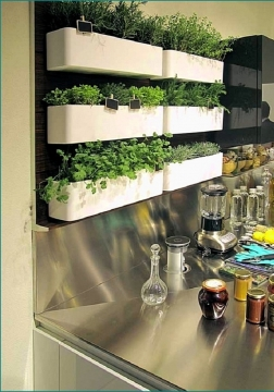 Kitchen Herb Wall Ideas Picture
