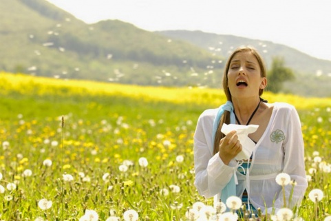 Why do seasonal allergies appear and how to treat them Picture